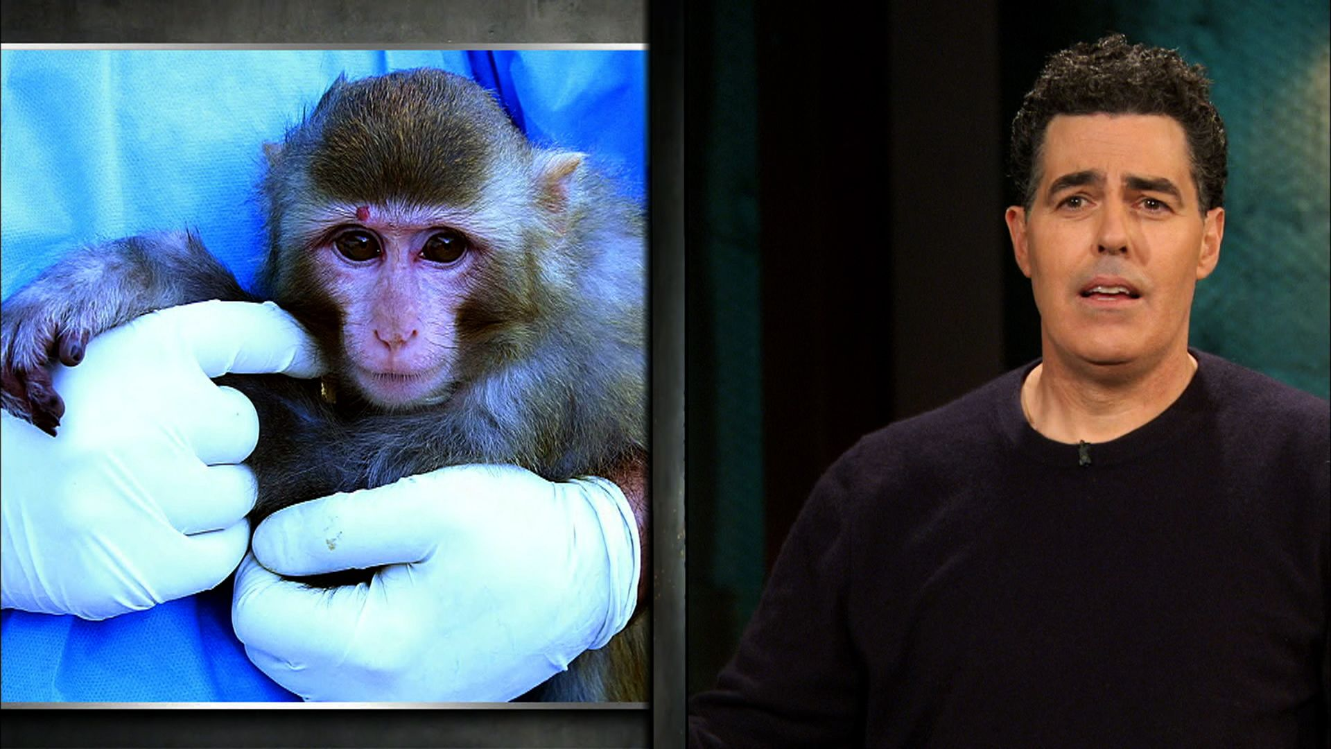 The Burn with Jeff Ross | Comedy Central: The Burn: Iran Sends Monkey Into Space