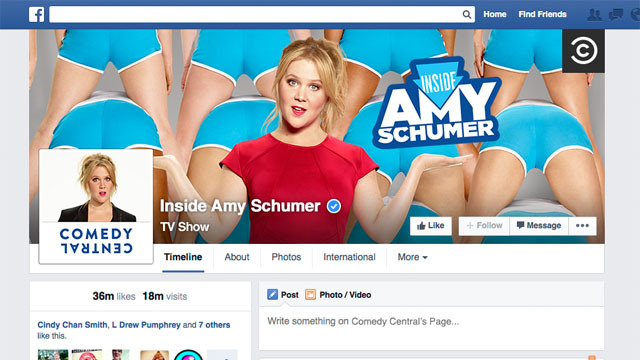 PRETTY MUCH AMY'S PERSONAL NEWSLETTER - LIKE INSIDE AMY SCHUMER ON FACEBOOK
