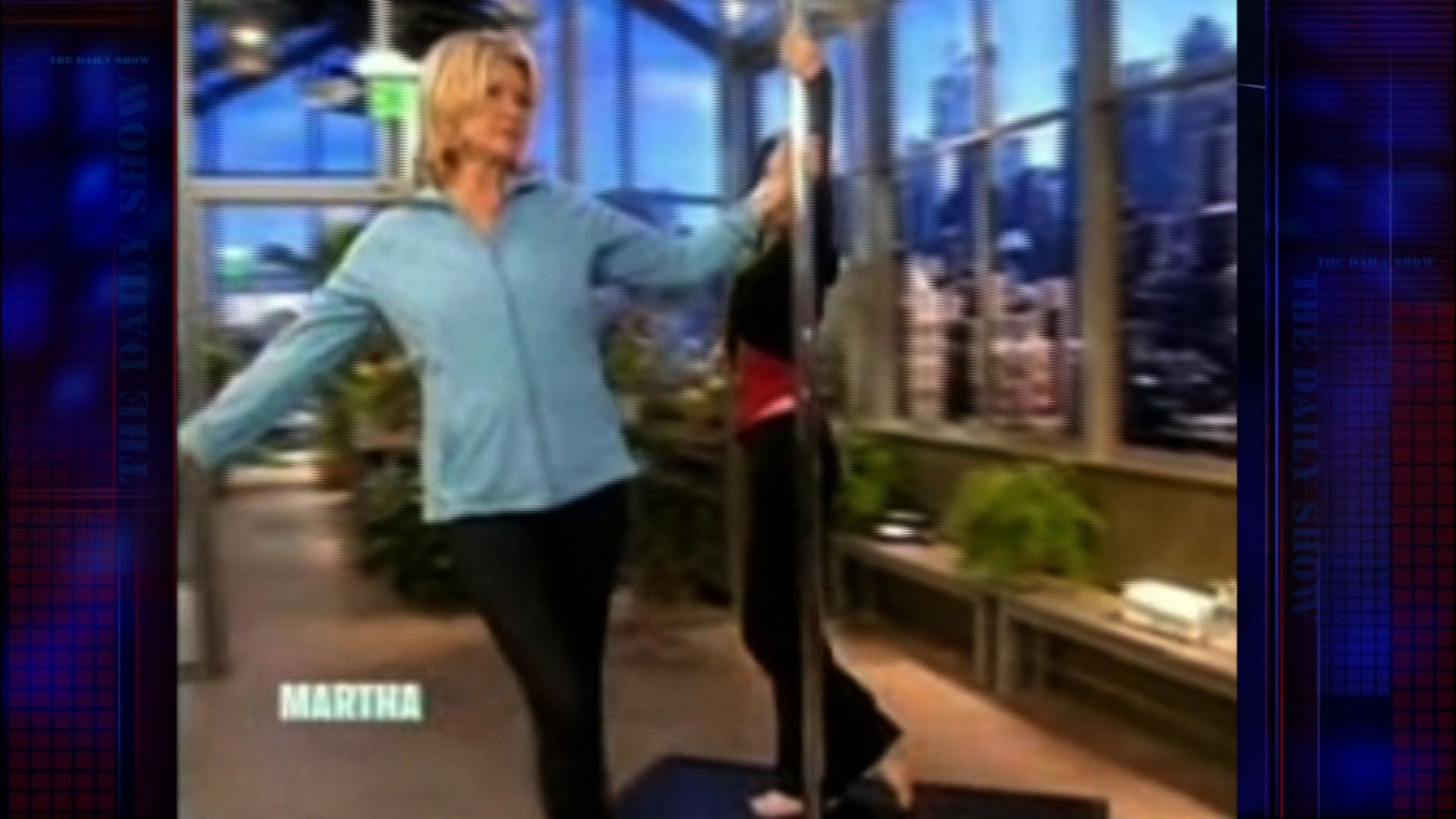 Martha stewart stripper pole
